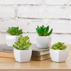 Primrue Decorative faux succulent plants are perfect for adding some greenery to your living room, bedroom, bathroom, or office indoor. Set these beautiful realistic succulents together as a small garden oasis or separate these cute home decor to light up any space. Simply decorate your coffee table, countertop, bookshelves, or windowsill with these modern minimalist design. Imitation plants are an ideal solution for those who want the look without the hassle or have curious pets/children at… Small Fake Plants, Fake Plants Decor, Room With Plants, Plant Decor, Small Garden Oasis, Bathroom Plants, Boho Bathroom, Master Bathroom, White Ceramic Planter