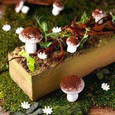 Eden Logcake [Dark chocolate 64% mousse, caramel, flourless chocolate cake, crisp almond biscuit.]   Antoinette