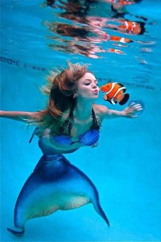 Clownfish love to play. They are like the Airedales of the sea.