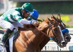 Hronis Racing's Stellar Wind and jockey Victor Espinoza simply imitated the tactics they used to take down the four-time champion and namesake of the race at Santa Anita Park, winning over a very game Vale Dori. Horse Racing, Race Horses, Santa Anita Park, Horse Profile, Horse Names, Sport Of Kings, Face Off, Thoroughbred, Dory