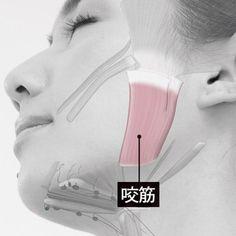 Face Care, Skin Care, Gua Sha Facial, Face Exercises, Face Yoga, Face Massage, Body Makeup, Jawline, Body Image