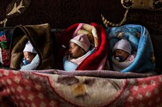 Triplets, Riyadh, Ahmed, and Khaled, born on New Year's Day. The boys are seen here in the family shelter at Dilhamye tented settlement in #Lebanon's Bekaa Valley. UNHCR / A. McConnell / January 2015