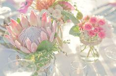 protea centerpiece - love!