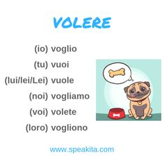 "Here is the verb VOLERE (to want), an irregular verb of the second group and a modal verb. io voglio tu vuoi lui/lei vuole noi vogliamo voi volete loro vogliono Can you make your own sentence with ""volere""? Italian Verbs, Italian Grammar, Italian Phrases, Italian Language, Korean Language, Japanese Language, Learn Italian Online, Learn To Speak Italian, Learn French"