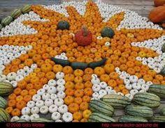 pumpkin festival - Google Search