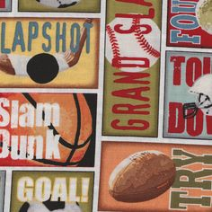 Michael Miller Hall of Fame Sports  Fabric 1 by luckyduckydesigns