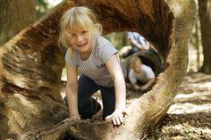 Der Erlebnispfad Hinterzarten möchte uns dazu anleiten, die Natur mit allen Sinnen aktiv zu erkunden und zu erleben. Evernius Flechtel führt uns dabei von St... Couple Photos, Aktiv, Couples, Kids, Animals, Holidays, Hiking With Kids, Hiking Trails, Couple Shots