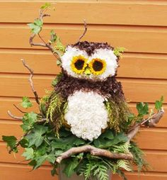 A Wise Old Owl Sympathy Tribute created by Caroline at Wigmore Florist, Gillingham, Kent