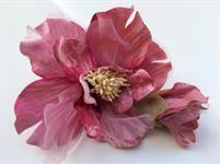 flor Isa rosa antiguo