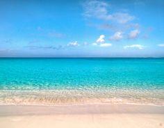 Paradise Island, Bahamas  Paradise ⓒ (by Jesse L. simplerevolution)