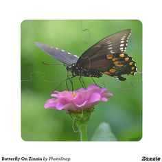 Butterfly On Zinnia Puzzle Coaster