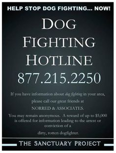 Worth pinning and repinning to stop dog fighting and save innocent animals!