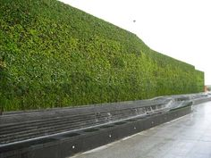 Well worth looking into at some stage in the future >> the Benefits of Green Roofs and Living Walls:   1. Decreasing Storm Water Runoff  2. Improving Thermal Performance  3. Increasing Sound Insulation, And Protection of the Roof Membranes  4. Increasing Aesthetics, Public Relations and Recreational Green Space  5. Reducing the Urban Heat Island Effect (UHI)  6. Improving Air Quality and Reducing Airborne Particulates  7. Sustaining Biodiversity