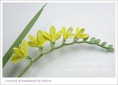 프리지아 향기는 은은한 달콤함이 있어많은 분들께 사랑받는 꽃입니다. 종이감기 주제는 주로 꽃입니다.평...