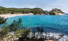 Empieza el gran debate. ¿Dónde se encuentran las mejores playas fuera de nuestro país? ¿Preferimos el refinamiento de las playas francesas o a locura de la costa americana? Quizás, una mezcla entre jungla y mar salvaje en Tailandia, o nos decantamos por la riqueza animal del entorno de las playas africanas. Y vosotros, ¿con cuál os quedáis?