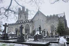 St. Mary's Cathedral (4 euro entry fee) Limerick, Ireland Limerick Ireland, Southern Ireland, Stethoscope, Trip Advisor, Euro, Cathedral, Landscapes, Vacation, City