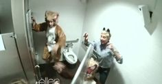 """Ellen scares people with Ylvis!I  I seriously can't get this song outta my head! Ahhhhh """"What does the fox say""""!"""