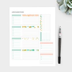 Large Planner Stickers with Mint Dots Design