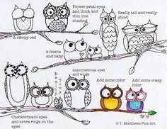 T. Matthews Fine Art - how to draw an owl, page 2...could draw a tree and have different owls everywhere.
