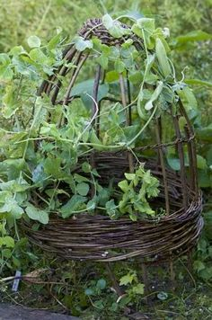 30+ Garden Projects using Sticks & Twigs - Garden Living and Making with Lovely Greens