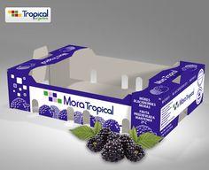 "Diseño de Packaging para ""Tropical Argentina"""