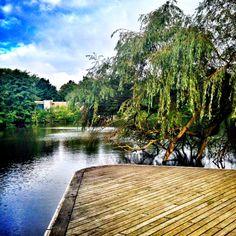 Unser #typischhamburch Lieblingsplatz der Woche: Inselpark Wilhelmsburg http://wp.me/p4gFnr-An