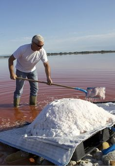 Salt harvest in Aigues-Mortes Camargue, South of France
