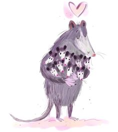possums   Paula J. Becker
