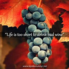 Life is too short to drink bad wine #WineQuotes Wine quote