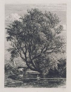 The Willow (etching) by Samuel Palmer