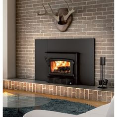 Century Heating High-Efficiency Fireplace Wood Insert — 75,000 BTU, EPA-Certified CW2900, Model# CB00006