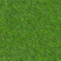 Free High Quality Tileable Seamless Grass Texture Free High Quality Tileable…