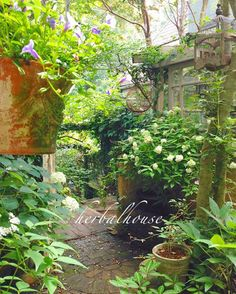 Garden Nook, Garden Spaces, Garden Path, Starting A Garden, Small Garden Design, Garden Living, French Cottage, Garden Structures, Shade Garden