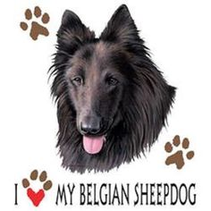 I Love My Belgian Sheepdog Dog HEAT PRESS TRANSFER for T Shirt Sweatshirt #908c #AB