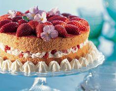 Erdbeer-Torte - Rezeptdatenbank - Swissmilk Vanilla Cake, Cheesecake, Pasta, Desserts, Food, Strawberries, Egg Yolks, Cake Ideas, Dessert Ideas
