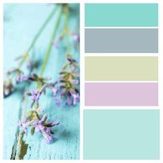 Lavender :-)