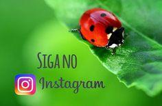 Siga no #instagram #greenme #brasil