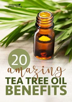 Tea tree oil comes from the leaves of the tea tree. There are many tea tree oil benefits and one way I use it daily is with my shampoo to keep my scalp healthy. I love natural remedies to stay healthy. Home Remedies For Arthritis, Gout Remedies, Natural Cough Remedies, Tea Tree Essential Oil, Essential Oil Blends, Essential Oils, Tea Tree Oil Uses, Oil Benefits, Tea Tree Benefits