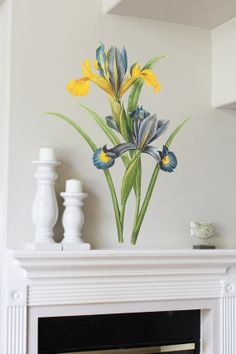 44in Spanish Iris Vintage Reproduction Wall Sticker by MettaPrints, $59.95