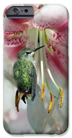 Restful Pose iPhone Case by Lynne McClure