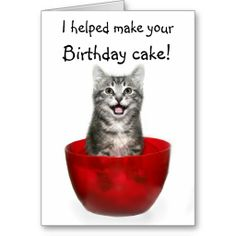 Funny Kitten Birthday Card Cats Baking Lol Cards