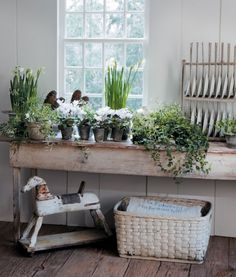 Rustic table with potted plants by Nancy Fishelson Potted Plants, Indoor Plants, Indoor Gardening, Vegetable Gardening, Container Gardening, Home Interior, Interior Design, Potting Sheds, Potting Benches