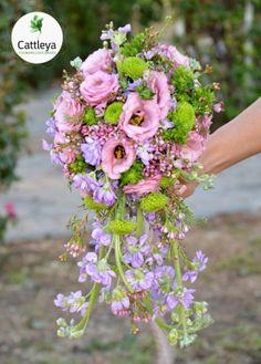 Cattleya - Flowers Love Brides