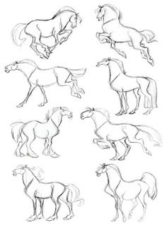 Body poses, showin off their horsey movements || CHARACTER DESIGN REFERENCES | Find more at https://www.facebook.com/CharacterDesignReferences if you're looking for: #art #character #design #model #sheet #illustration #best #concept #animation #drawing #archive #library #reference #anatomy #traditional #draw #development #artist #how #to #tutorial #conceptart #modelsheet #animal #Horses #Horse