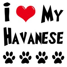 Havanese Gifts | Gifts for Dog Lovers | My Dog Rulez!