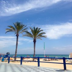 7 Great things to do in Alicante