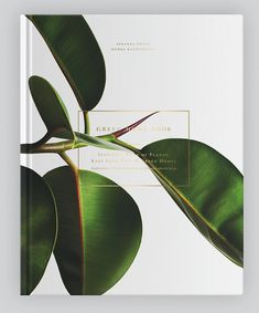 The houseplants in this book live in wonderful places, leaf through the pages and get inspired by the beautiful homes, intensive home decor solutions and great atmosphere. On the pages of the book you can peek into more than 30 individual Finnish Homes. But how do you take care of the plants? Don't worry, in …
