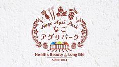 「健康・美容・長寿」をテーマに、沖縄の自然の恵みをお届けします こんにちは、沖縄からMOSAICKAFEです。 私は最近、仕事で北部に行くことが多かったのですが、 行く先々の飲食店で「やんばる畑人(ハルサー)プロジェクト […