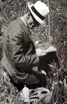 Hesse. Hermann Hesse, William Faulkner, Nobel Prize, Literature, Writer, Lyrics, Franz Marc, My Love, Books