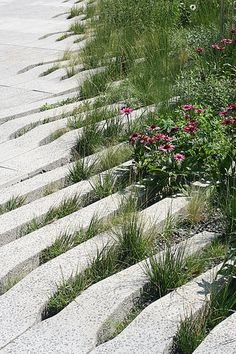 The High Line, NYC, Diller Scofidio & Renfro, 2009. (Photo: Christian Marc Schmidt)